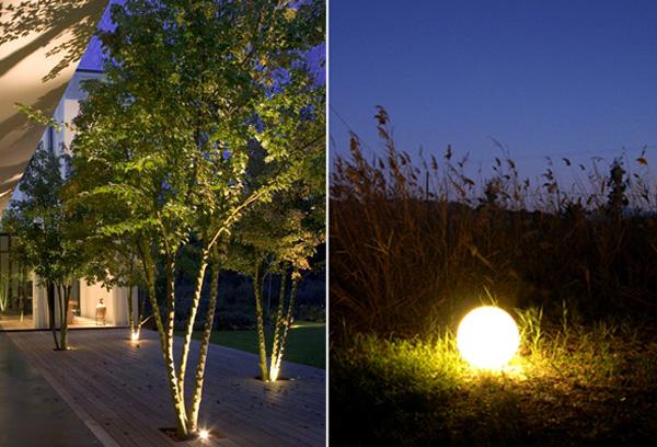 Φωτισμός κήπου φυτών δένδρων
