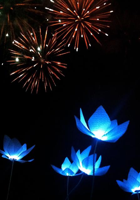 Πυροτεχνήματα γάμου με φωτιστικά λουλούδια εξωτερικού χώρου